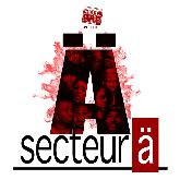 SECTEUR A : billet et place de concert