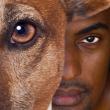 Théâtre, A RIRE ET A PENSER, Moi, chien créole, de Bernard LAGIER à Pointe-à-Pitre @ Salle des congrès et des arts vivants - Billets & Places
