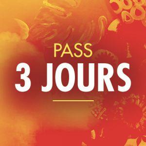 Solidays 2020 - Pass 3 Jours 89 Euros