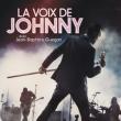 Concert LA VOIX DE JOHNNY