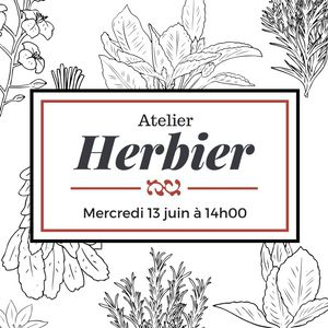 HERBIER (ATELIER) @ CITE DU CHAMPAGNE - AY