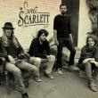 Concert SWEET SCARLETT