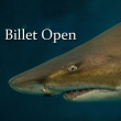 """BILLET """"OPEN 2018"""""""