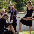 Festival Consort Brouillamini