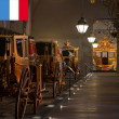 Visite Guided tour : Les écuries et la galerie des Carrosses