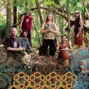 concert hilight tribe dj 39 s montauban rio grande billets places. Black Bedroom Furniture Sets. Home Design Ideas