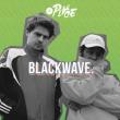 Concert blackwave.