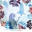 Concert Molokids #20 - ECHOES (Ladylike Lily)