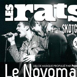 LES RATS @ Le Novomax - QUIMPER