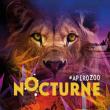 BILLET SPECIAL NOCTURNES 2019 à PARIS @ Parc Zoologique de Paris - Billets & Places