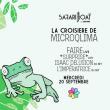 Concert La Croisière Safari de Microqlima à PARIS @ Safari Boat - Quai St Bernard - Billets & Places