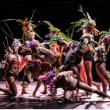 Spectacle SINE QUA NON ART / C. BÉRANGER & J. PRANLAS-DESCOURS à BIARRITZ @ Théâtre du Casino Municipal - Billets & Places