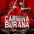 Spectacle CARMINA BURANA à Bourg en Bresse @ AINTEREXPO - EKINOX - Billets & Places