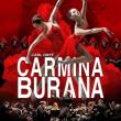Spectacle CARMINA BURANA