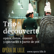 Spectacle TRIO DECOUVERTE WEB