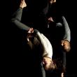 Spectacle 1+1 = INFINI à BELFORT @ VIADANSE - BELFORT - Billets & Places