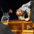 Concert Gogol et Max à SAINT FLORENTIN @ Théâtre de Verdure Léo Ferré - Billets & Places