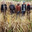 Concert Le Peuple de l'herbe