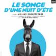 Théâtre LE SONGE D'UNE NUIT D'ÉTÉ