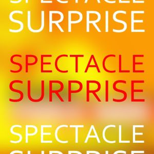 Spectacle Surprise