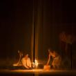 Théâtre La Ménagerie de Verre