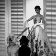 Projection Sabrina à SAINT SAUVEUR EN PUISAYE @ La Maison de Colette - Billets & Places