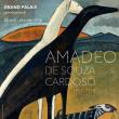 Expo AMADEO DE SOUZA-CARDOSO - BILLET NON DATE à Paris @ ENTREE CHAMPS-ELYSEES - Billets & Places