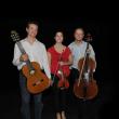 Spectacle Trio Guitare, Violon et Violoncelle à Perpignan @ Théâtre de l'archipel / Carré NN - Billets & Places