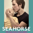 Projection SEAHORSE - The dad who gave birth
