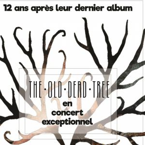 The Old Dead Tree