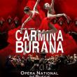 Spectacle CARMINA BURANA - Ballet Choeurs et Orchestre