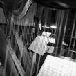 Concert Musique de chambre - D'une guerre à l'autre