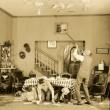 "Expo Programme "" A wild roomer"" (1h)"
