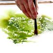 Atelier LES SAMEDIS  AQUARELLE  à ILLKIRCH GRAFFENSTADEN @ Vill'A  - Billets & Places