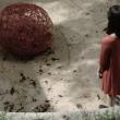 ECHOS - 3 films inédits à Paris @ La Gaîté Lyrique - Billets & Places