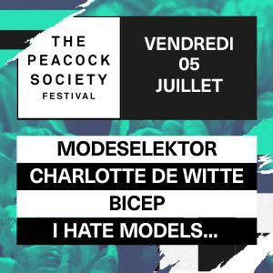The Peacock Society Festival 2019 - Ticket Vendredi