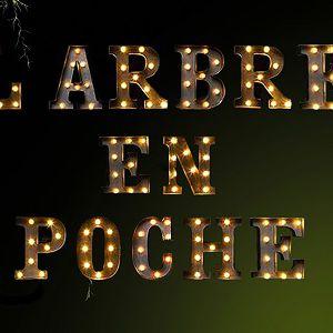 L'ARBRE EN POCHE @ THEATRE DE L'ARSENAL - VAL DE REUIL