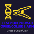 CrispR/Cas9 : La révolution du copier/coller de l'ADN - Workshop