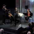 Intégrale des Quatuors de Haydn - concert n°14 à CAEN @ THEATRE CAEN NN2 - Billets & Places