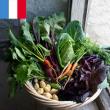 Visite guidée - Potager de la Reine. Les fruits du potager à VERSAILLES @ Domaine de Marie-Antoinette - Billets & Places