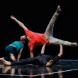 Festival CCNR / Yuval PICK à BIARRITZ @ Théâtre du Casino Municipal - Billets & Places