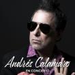 Concert ANDRES CALAMARO