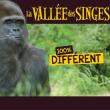 LA VALLE DES SINGES 2017