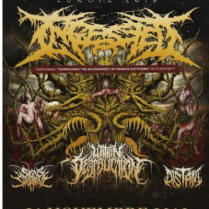 Ingested + Within Destruction + Distant + Signs Of The Swarm