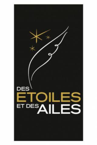 Billets MEETING AERIEN DES ETOILES ET DES AILES - JOUR 1 - Aéroport Toulouse Francazal