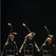 Spectacle Quatre tendances #6 / Ballet de l'Opéra National de Bordeaux à Biarritz @ Gare du Midi - Billets & Places