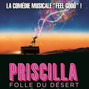 Spectacle PRISCILLA FOLLE DU DESERT