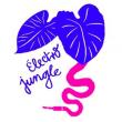 *  CONCERT FAMILLE  * Klang ! Electro jungle