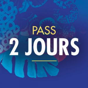 Solidays 2020 - Pass 2 Jours