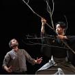 Théâtre L'Expérience de l'Arbre à BREST @ LE STELLA - Billets & Places
